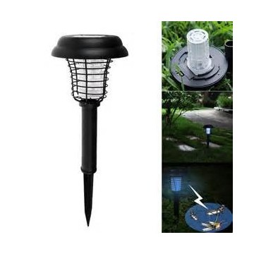 Lampe solaire tue insecte